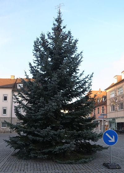 Christbaum2016.jpg